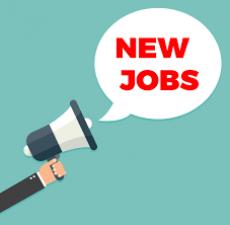 Vacancy in the posts of Assistant Professor and Trend Graduate Teacher, get attractive salary