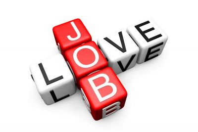 Job openings for the posts of project assistant and field worker, know the selection process