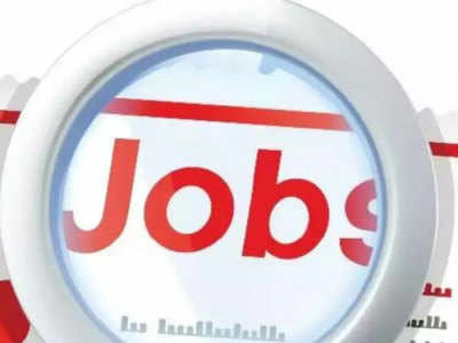 Vacancy to the posts of Patwari, 12th pass apply now