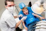Want to be a Dental Doctor?