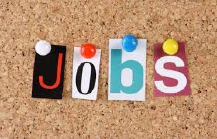 मेट्रो दे रही हैं नौकरी का मौका 1 फ़रवरी तक करें आवेदन