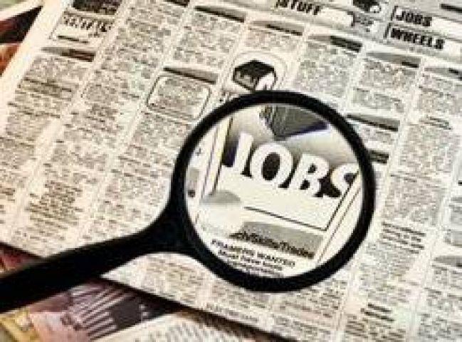 HPSSSC is hiring for 1005 posts! Apply at hpsssb.hp.gov.in