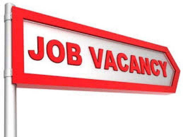 ओडिशा सब-ऑर्डिनेट स्टाफ सेलेक्शन कमीशन में 800 से अधिक पदो पर भर्ती