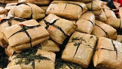 Ganja worth 60 lakh seized