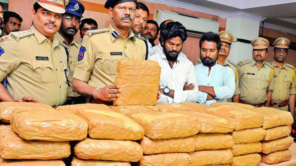 Coastal security police seized 34 kilograms ganja near Arcotthurai