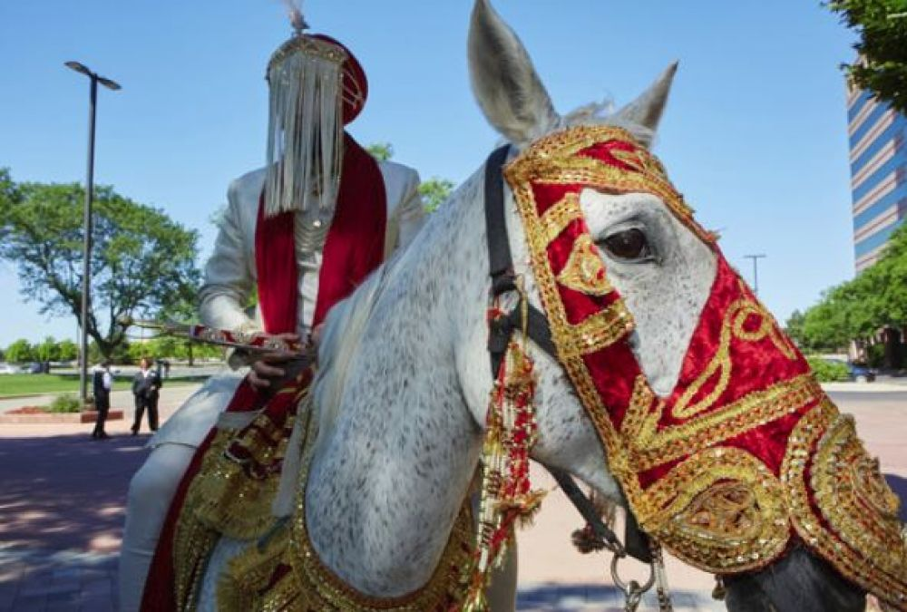 Village sarpanch and four others  arrested for boycotting community over groom riding a horse