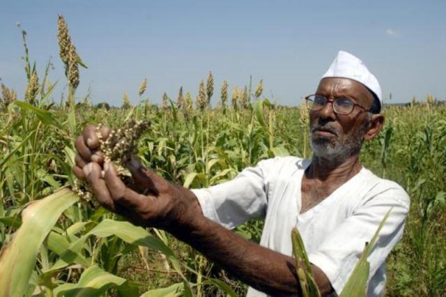 वादियों में गूंजता किसान का करूण कृंदन, आखिर कौन ले रहा सुध