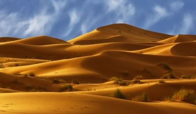 Amazing Facts: Interesting facts about the Sahara Desert