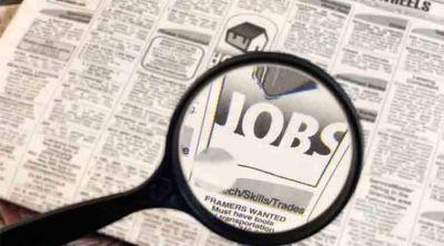 JNU Recruitment 2019 Assistant Professor 97 Posts Online Application