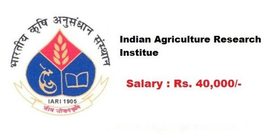IARI Recruitment 2018: Interview for the post of Research Associate