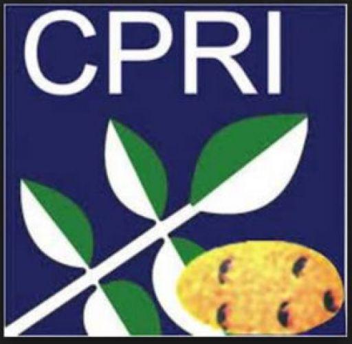 Hurry Up! Multi-tasking Staff openings in CPRI