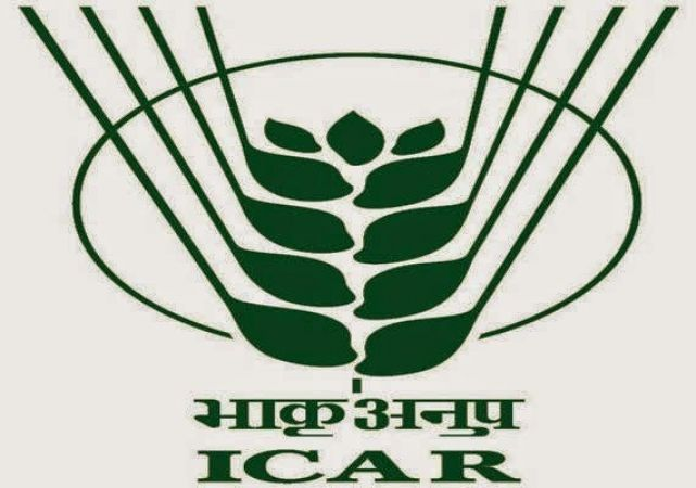 Apply for the job vacancy in INDIAN INSTITUTE OF SOIL SCIENCE