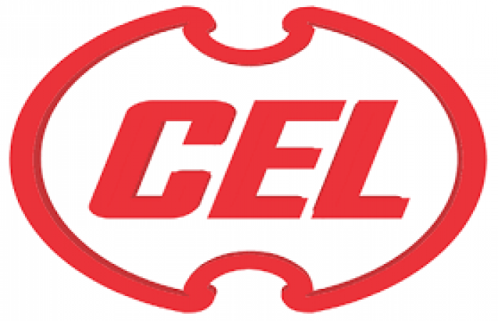 Apply for the job vacancy in CENTRAL ELECTRONICS LIMITED