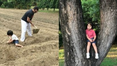 Taimur Ali Khan seen farming with his father, photos went viral