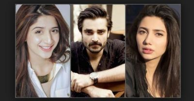 Hearing the verdict on Kashmir, Pakistani celebs said,
