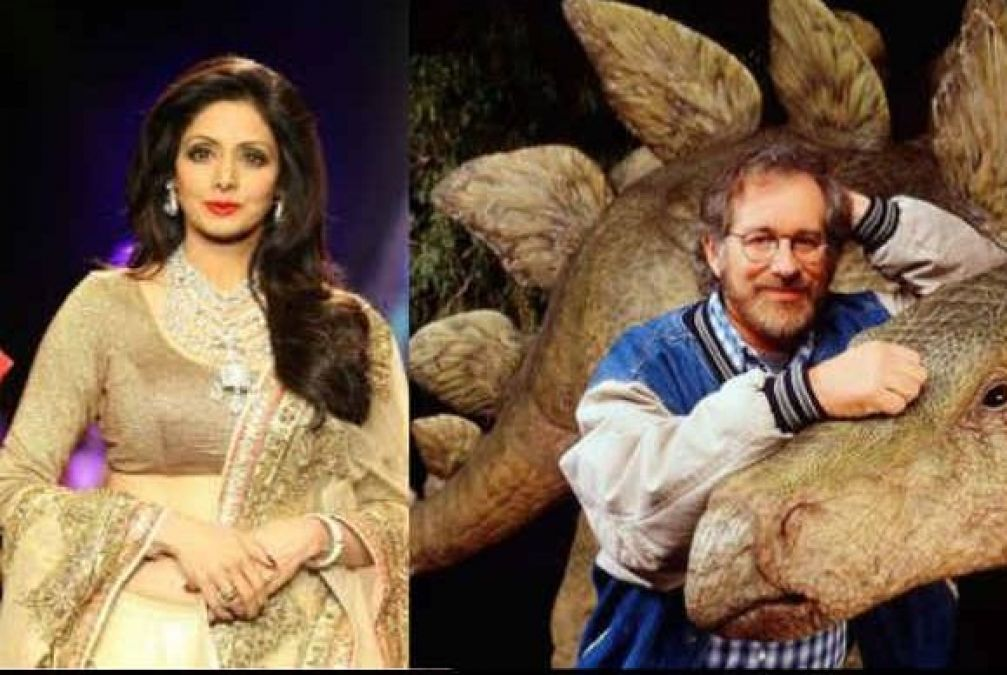 After Being Superhit, Sridevi Got Offers From Hollywood but she refused because of this reason!