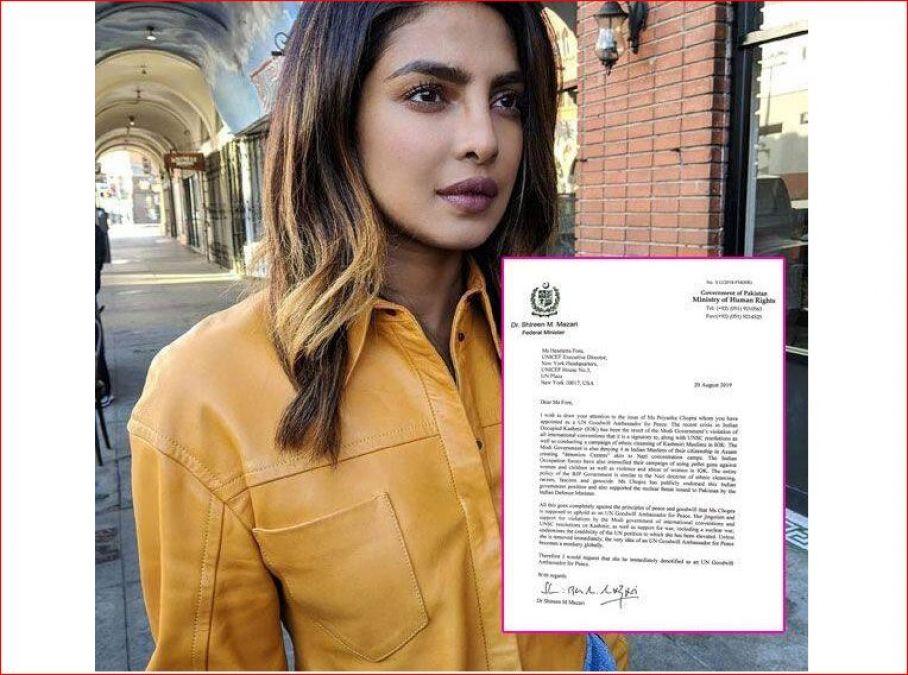 प्रियंका चोपड़ा पर जमकर फूटा इस पाकिस्तानी मंत्री का गुस्सा, कहा- 'तमाशा बनकर...'