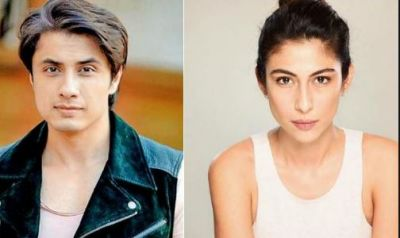 Meesha Shafi accuses Pakistani actor, 'When my husband was out...