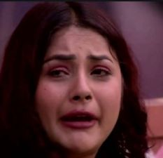 Bigg Boss13: Salman Khan calls Shehnaz Gill jealous and asks to leave the house