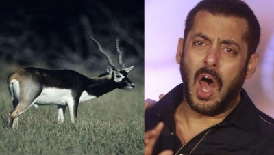 Salman Khan to appear in court tomorrow for poaching of black deer