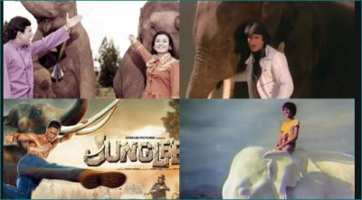 When these Bollywood films shows unbreakable love between elephant and human