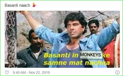 Hema Malini raised voice for monkeys, trollers said- 'Basanti seriously ...'