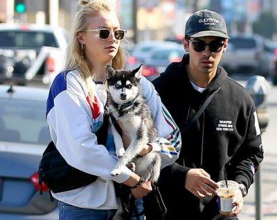 Joe और Sophie ने अपने Doggy की याद में बनवाया टैटू..