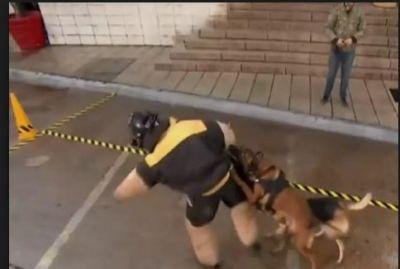 'खतरों के खिलाड़ी' में स्टंट के दौरान कुत्ते का शिकार हुईं भारती, हुई ऐसी हालत