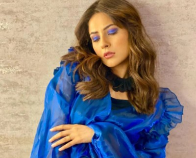 Shehnaaz Gill's look in blue outfit with matching makeup, see post
