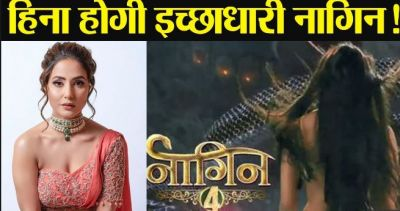 Here is what Hina Khan says on news of working in Nagin 4