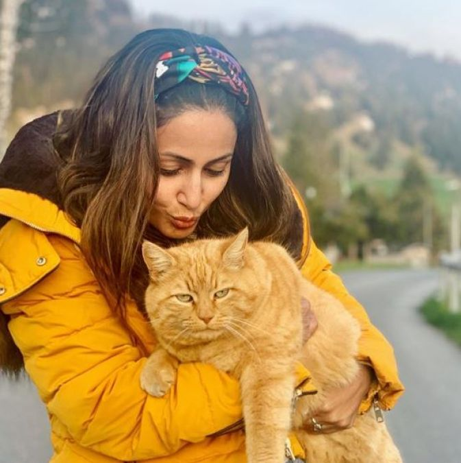 In a photo shared by Hina Khan with the cat, Fans said: 'Cat is cuter....