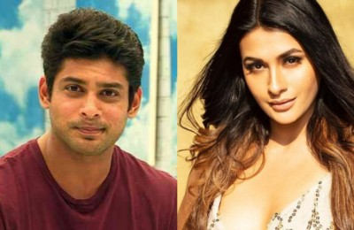 Big Boss 14: Siddharth gave Pavitra Punia this opinion