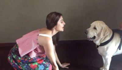 Anushka Sharma to open an animal shelter and veterinary hospital