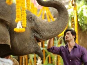 Vidyut Jammwal dreadful martial acts from Junglee's set revealed