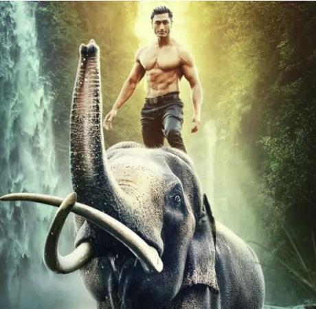 Junglee box office collection: Vidyut Jammwal's film collect this much in first week