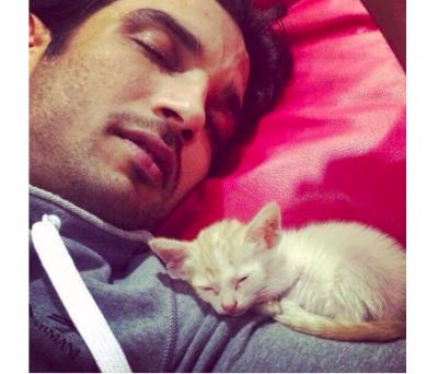 How cute! Sushant Singh Rajput taking a nap with cute kitten