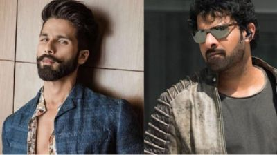 Prabhas was very impressed with the trailer: Shahid Kapoor