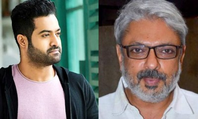 Jr. NTR to make debut in Bollywood ? may cast in Sanjay Leela Bhansali upcoming project