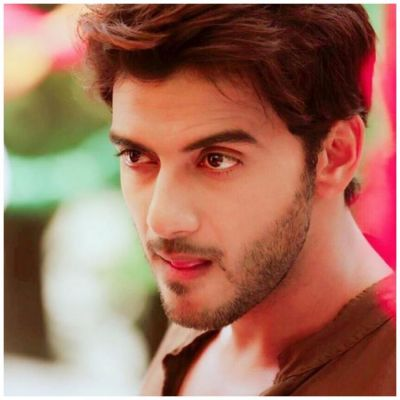 Vikram Singh Chauhan will not be part of Ishqbaaaz?