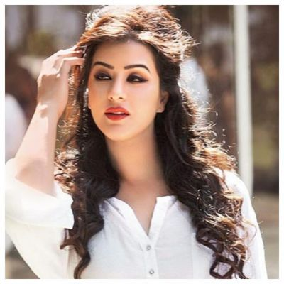 Bigg Boss 12: Shilpa Shinde comes in support of host Salman Khan over Karanvir Bohra