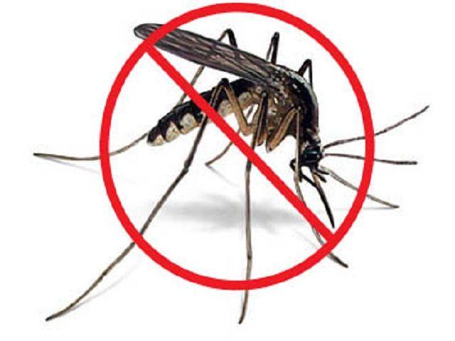 अब नहीं करेंगे मच्छर आपको परेशान