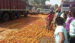 Farmers crushing 'Tomatoes under Truck' because of Demonetisation!!