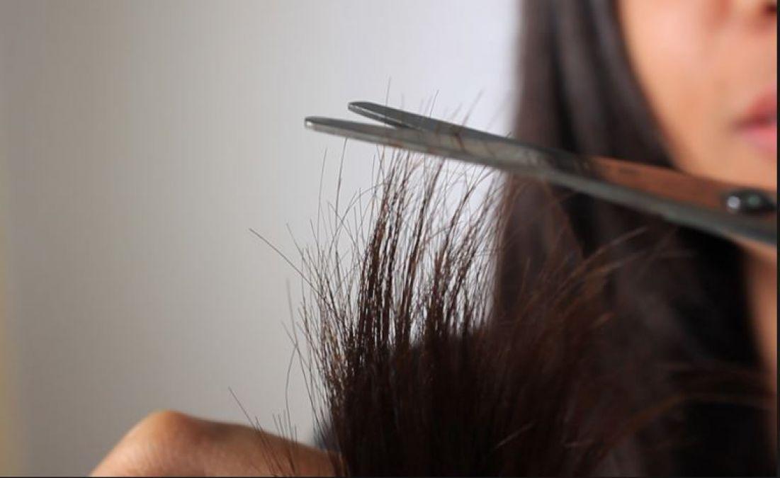 दो मुंहे बालों से छुटकारा दिलाएंगे ये हेयर मास्क