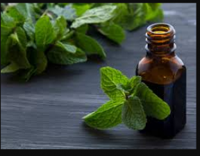Mint oil is beneficial for skin, follow these tips