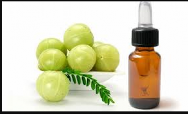 Amla oil is a boon for hair, know its countless benefits