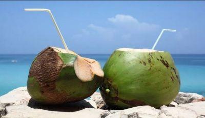 जानिए नारियल पानी से जुड़े लाभ, सेहत के लिए हैं फायदेमन्द