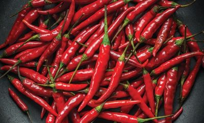 Add red chili peppers in your diet to lose weight