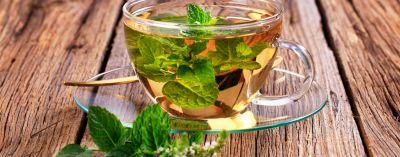 पेट के लिए फायदेमंद होती है पुदीने की चाय
