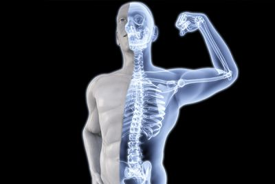 हड्डियों को मजबूत बनाते हैं ये आहार