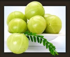 Know why to 'must' include amla in your daily diet